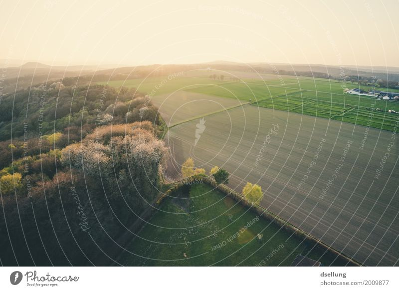 Bird's eye view from the farm at dusk Environment Nature Landscape Sunrise Sunset Spring Beautiful weather Meadow Field Forest Eifel Free Fresh Healthy