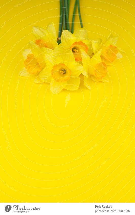 #AS# Easter Yellow I Art Esthetic Easter egg nest Easter wish Easter Monday Easter gift Flower Bouquet Spring Spring flower Spring colours Spring celebration