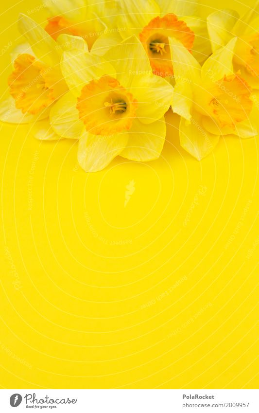 #AS# Easter Yellow II Art Work of art Esthetic Narcissus Gaudy Many Easter egg nest Easter wish Easter Monday Spring Spring fever Spring flower Spring day