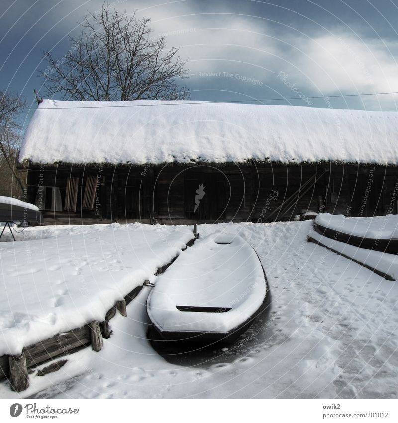 Winter in the Spreewald Environment Landscape Sky Clouds Climate Weather Beautiful weather Ice Frost Snow loam Germany House (Residential Structure)