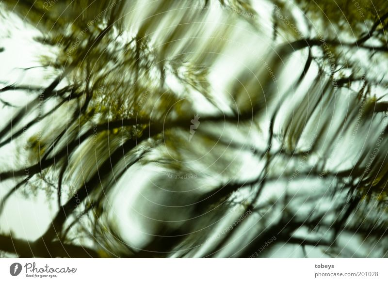 Nature Water Dream Waves Environment Flow Mirror image Swing Unclear Distorted Bend Whirlpool Spooky Pattern Surface of water