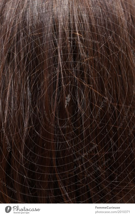 Colour Beautiful Hair and hairstyles Brown Long-haired Brunette Auburn Hair Stylist Hair structures Smooth hair