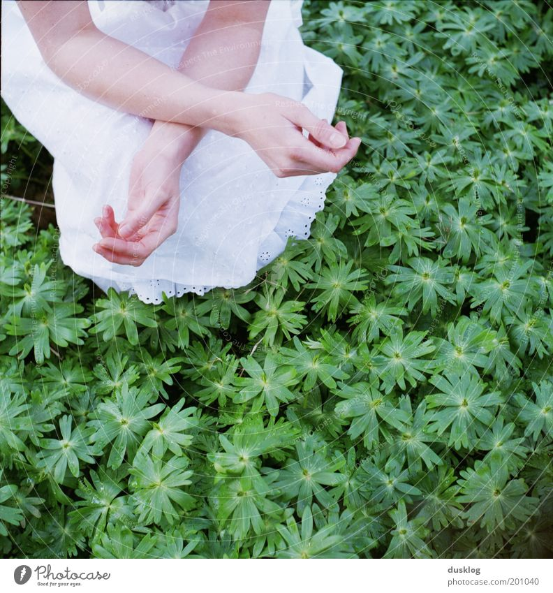 X Beautiful Skin Human being Feminine Young woman Youth (Young adults) Arm Hand Fingers Nature Skirt Dress Fragrance To enjoy Growth Wait Green White Happy