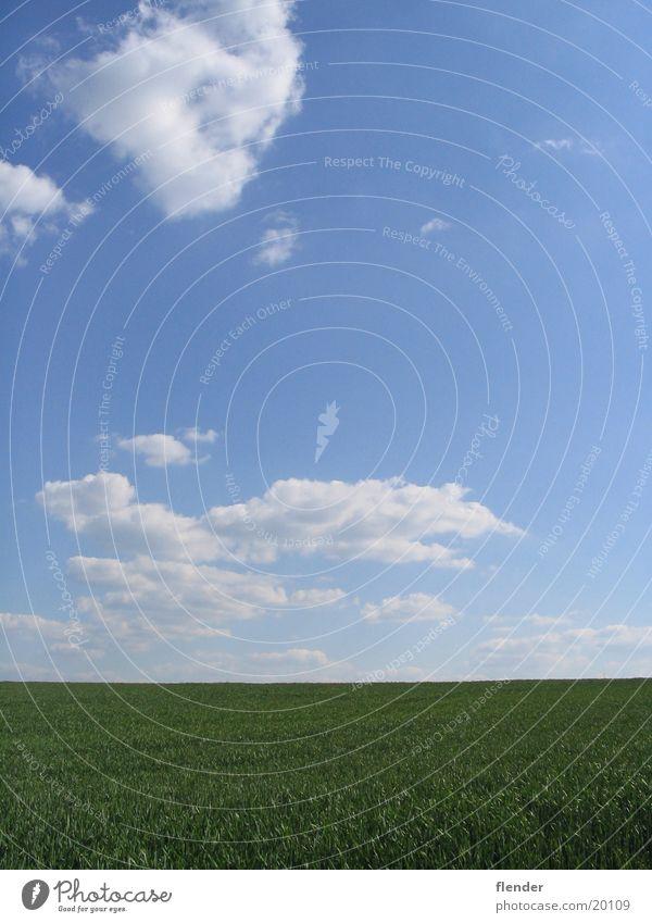 Sky White Sun Green Blue Summer Clouds Meadow Grass Beautiful weather
