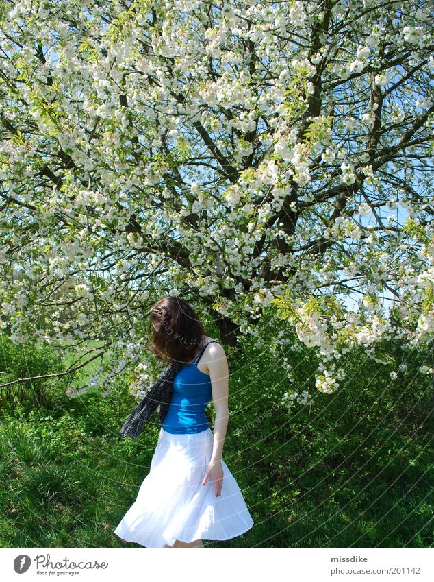 Human being Nature Youth (Young adults) Tree Plant Meadow Feminine Blossom Grass Movement Spring Freedom Park Dance Adults