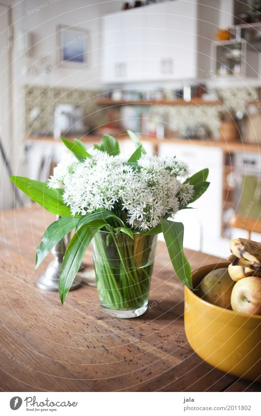 wild garlic Living or residing Flat (apartment) Table Kitchen Bowl Decoration Bouquet Esthetic Fragrance Simple Friendliness Colour photo Interior shot Deserted