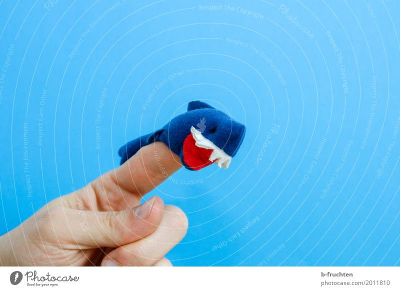 killer shark Man Adults Fingers 30 - 45 years Puppet theater Toys Doll Aggression Brash Blue Finger puppet Shark Muzzle Teeth Bite Aggressive Attack Playing
