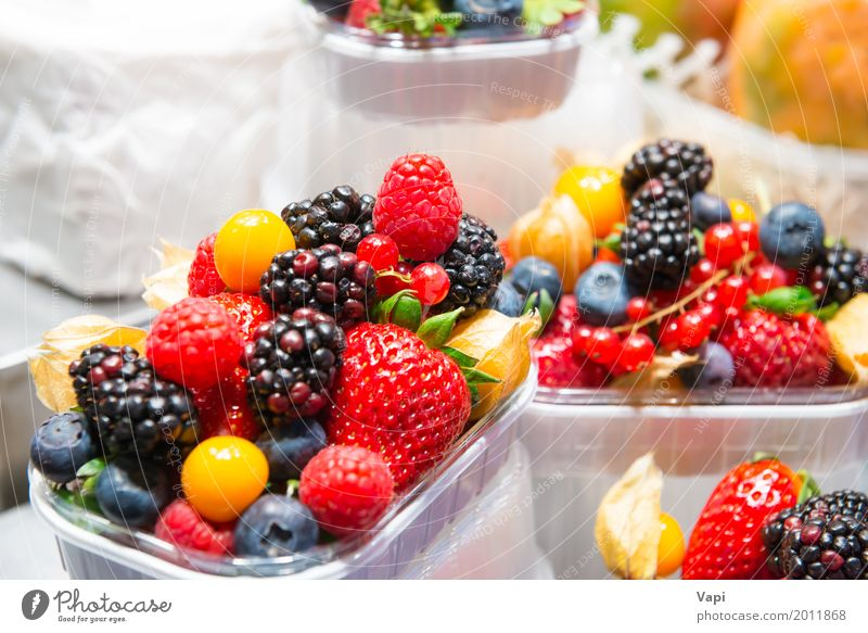 Fresh berries Nature Blue Summer Colour Green White Red Black Eating Yellow Natural Exceptional Food Orange Pink Fruit