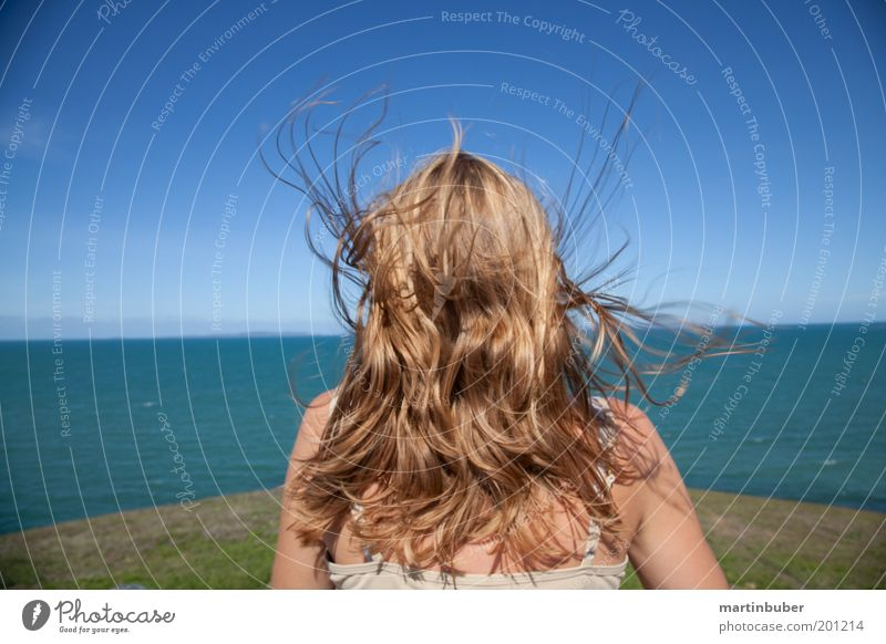 freedom Joy Contentment Relaxation Meditation Vacation & Travel Far-off places Freedom Ocean Feminine Hair and hairstyles Cloudless sky Horizon Wind Blonde