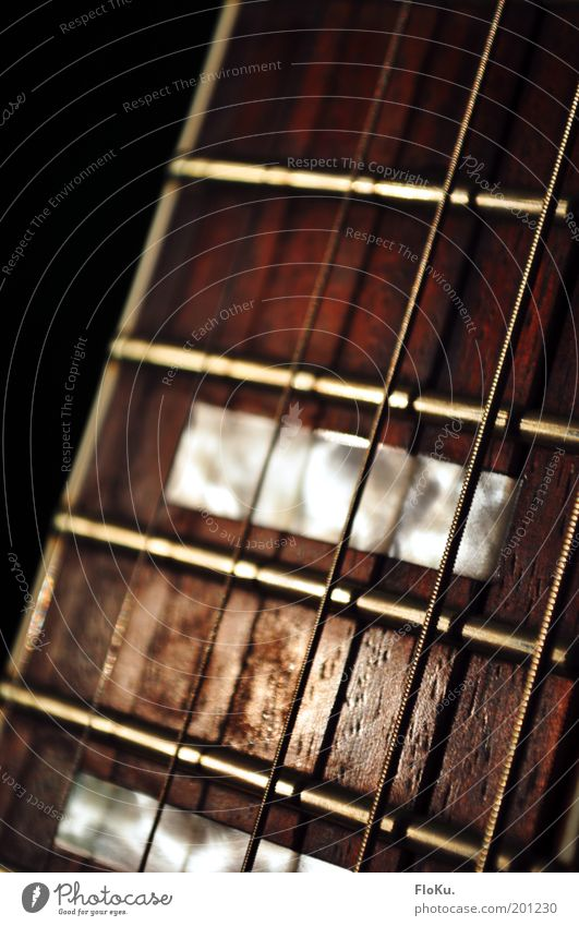 Black Music Wood Brown Metal Glittering Near Leisure and hobbies Guitar Musical instrument Musical instrument string Make music Mother-of-pearl