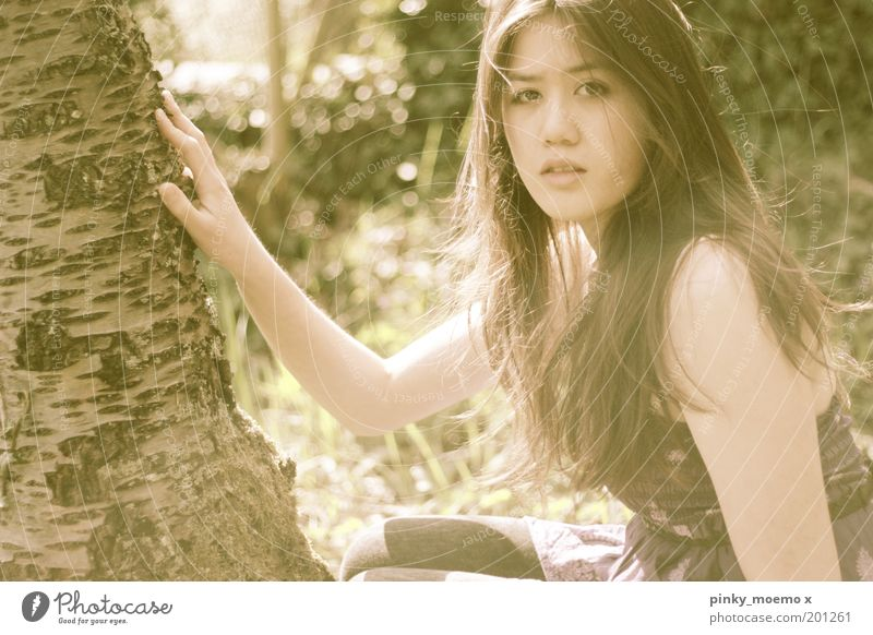 Human being Nature Hand Youth (Young adults) Tree Face Feminine Garden Moody Woman Touch Portrait photograph Tree bark Young woman Back-light Love of nature