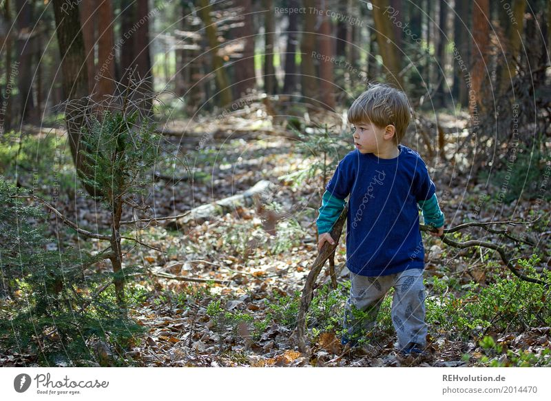On the road in the forest Trip Adventure Freedom Human being Masculine Child Toddler Boy (child) Infancy 1 1 - 3 years Environment Nature Spring