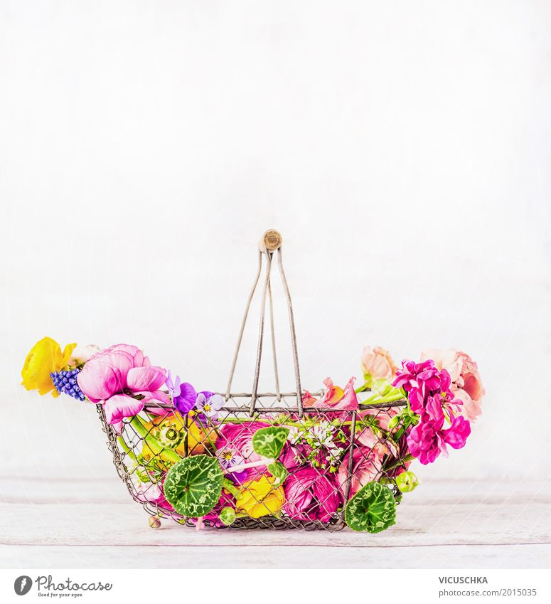 Basket with beautiful colorful garden flowers on white background Lifestyle Style Design Summer Flat (apartment) Garden Interior design Decoration