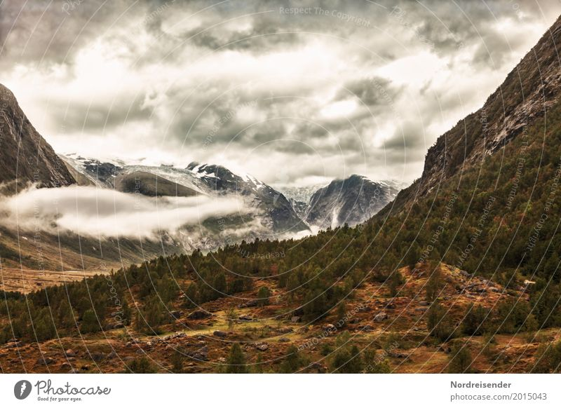 Sky Nature Vacation & Travel Landscape Clouds Forest Dark Mountain Lanes & trails Natural Tourism Brown Rock Rain Hiking Air