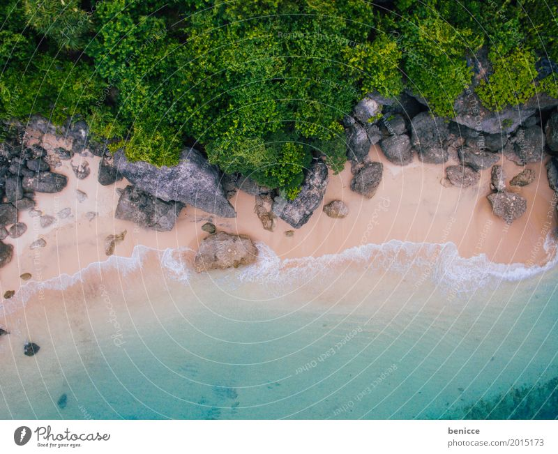 beach from above Beach Bird's-eye view Aerial photograph Tall Vacation & Travel Bali Indonesia Sandy beach Water Ocean Coral Summer sunshine White Paradise