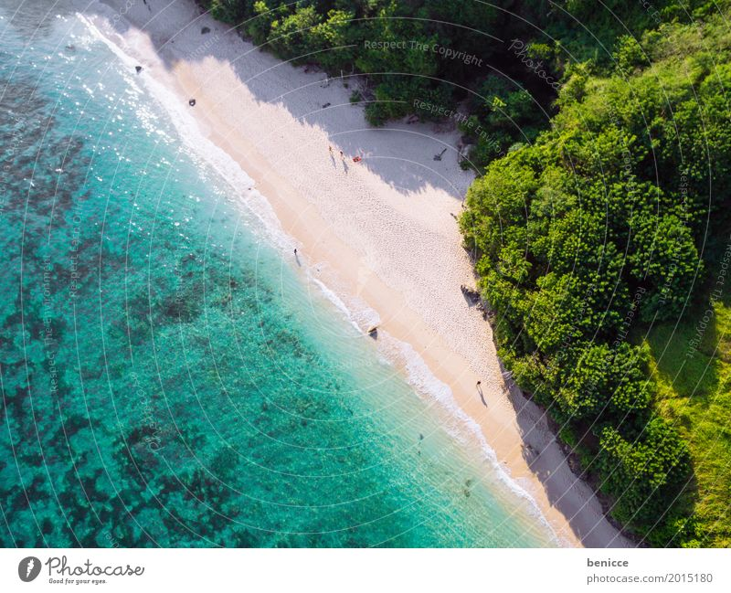 Holiday from above Beach Bird's-eye view Aerial photograph Tall Vacation & Travel Bali Indonesia Travel photography Sandy beach Water Ocean Coral Summer Sun