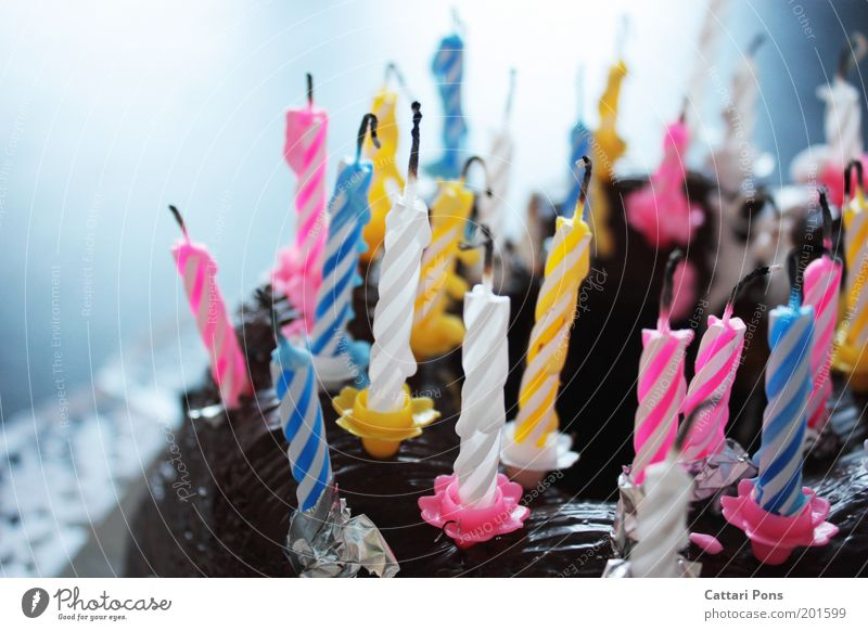Birthday Candles II Food Dough Baked goods Dessert Candy Nutrition Joy Feasts & Celebrations To enjoy Sweet Blue Yellow Pink White Happy Happiness Hospitality