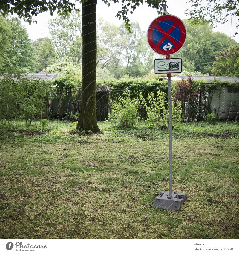 no parking in the park Road sign Vehicle Car Parking Stop No standing Clearway Meadow False Signs and labeling Clue Colour photo Exterior shot Tree Roadside