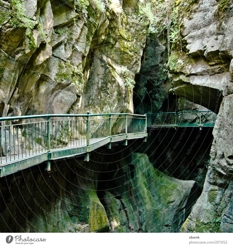 Lion's Den Moss Hill Rock Alps Mountain Eerie Lanes & trails Handrail Canyon Cave Italy Colour photo Exterior shot Deserted Green Deep