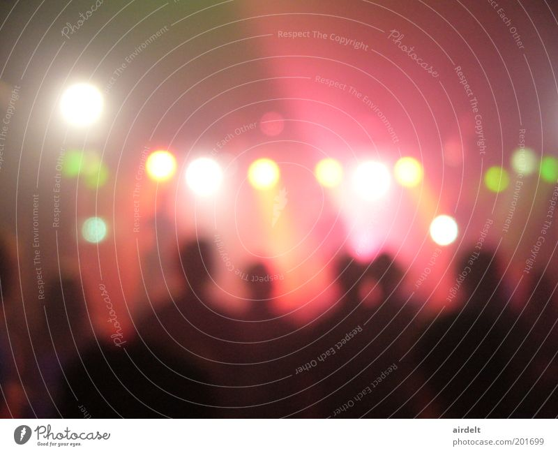 concert Crowd of people Music Concert Stage Singer Musician Fan Movement Dance Euphoria Interest Surprise Colour photo Interior shot Blur Long shot Pink