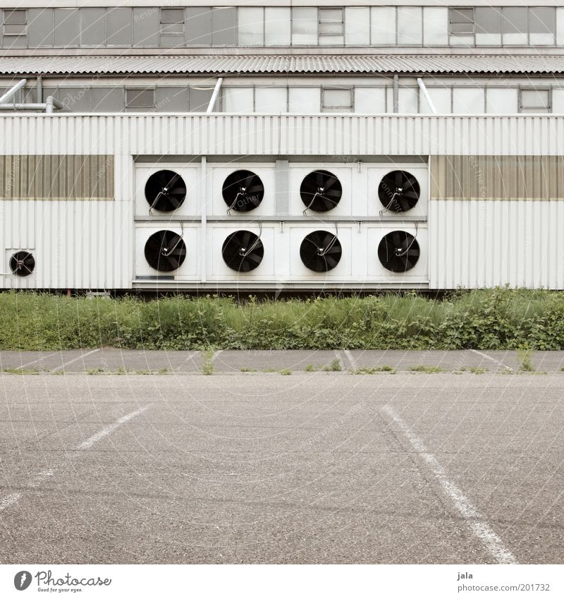 White Green Plant Window Grass Gray Building Places Gloomy Industrial Photography Factory Manmade structures Parking lot Industrial plant Ventilation