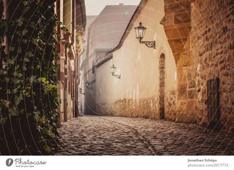 Augustinian Monastery Erfurt II Old town Augustinian monastery Exterior shot Ground Vista Ivy Colour photo Alley Cobblestones Lantern Street lighting