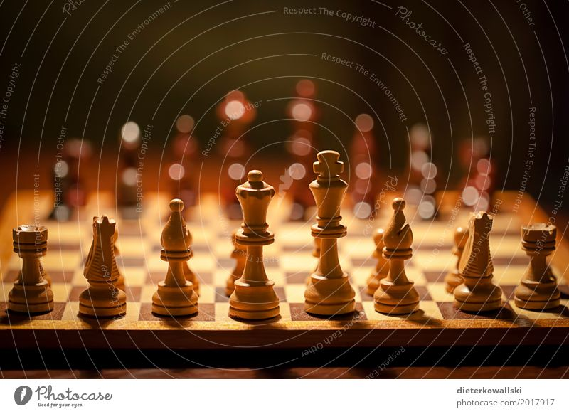 Chess II Board game Think Playing Astute Concentrate Planning Tactics Chess piece Figure Army Theater of war pawn sacrifice Colour photo Interior shot