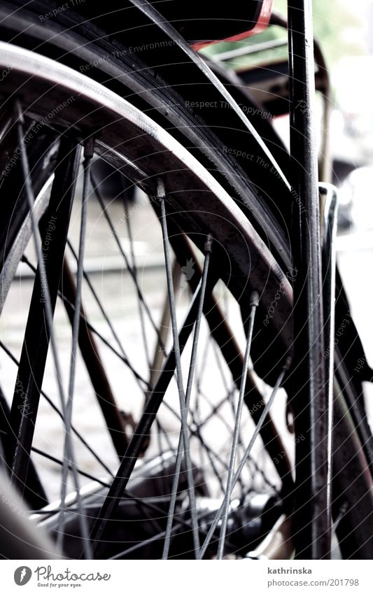 Absolute spontaneity Bicycle Simple Detail Structures and shapes Deserted Day Worm's-eye view Wheel Spokes Close-up Guard Exterior shot