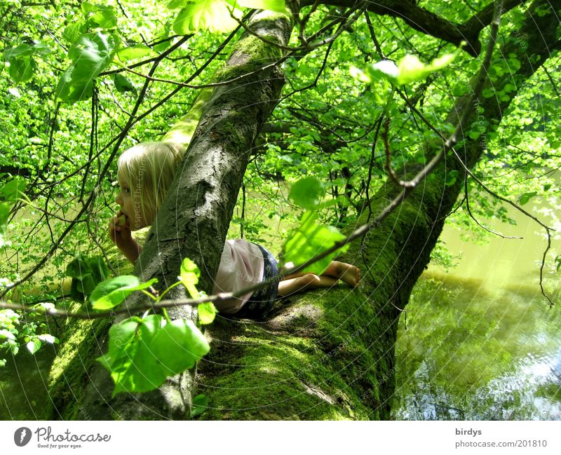 house tree Playing Adventure Child Girl Infancy 1 Human being 3 - 8 years Nature Water Summer Beautiful weather Tree Moss Forest Lakeside To enjoy Lie Looking