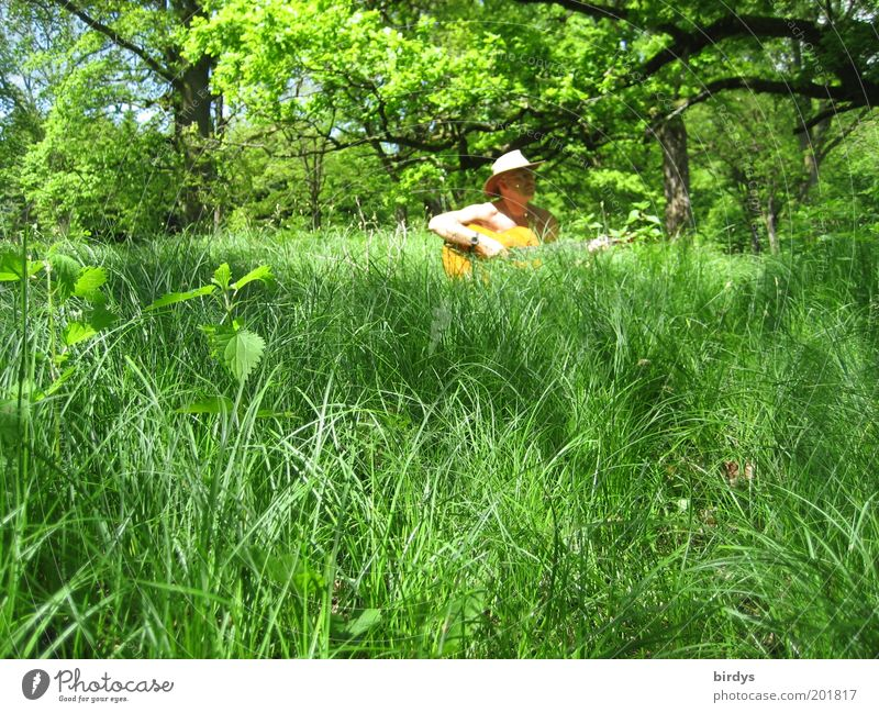 Forest and meadow musicians Joy Summer Music Musician Guitar Beautiful weather Grass Hat To enjoy Free Natural Positive Green Happy Contentment Peaceful