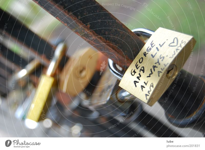 Love Emotions Couple Together Metal Heart Door Closed Safety Protection Trust Rust Lock Safety (feeling of) Attachment