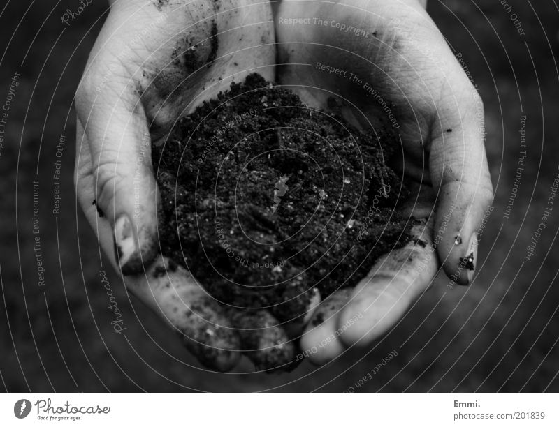 Nature Hand Environment Earth Dirty Climate Fingers Growth Agriculture Environmental protection Gardening Human being