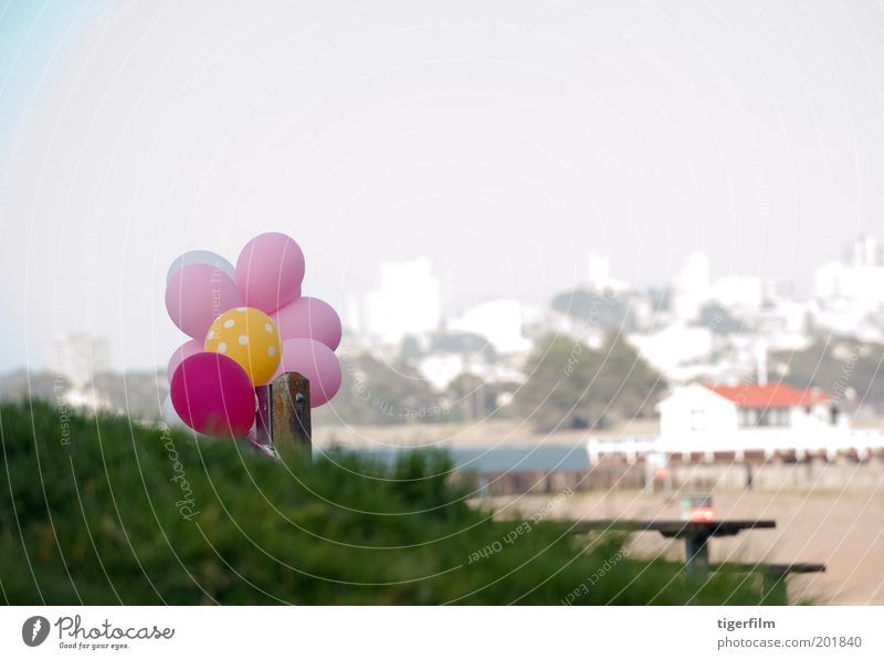 balloons on the beach White City Red Joy Colour Beach House (Residential Structure) Yellow Grass Sand Building Pink Table Balloon Round Skyline