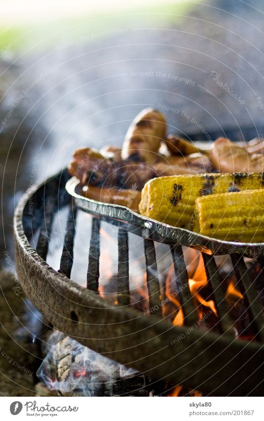 meal Grill Hot BBQ Corn cob Sausage Smoke cloud Fire Barbecue (apparatus) Meat BBQ season Charcoal (cooking) Summer Dinner Food Nutrition Appetite Barbecue area