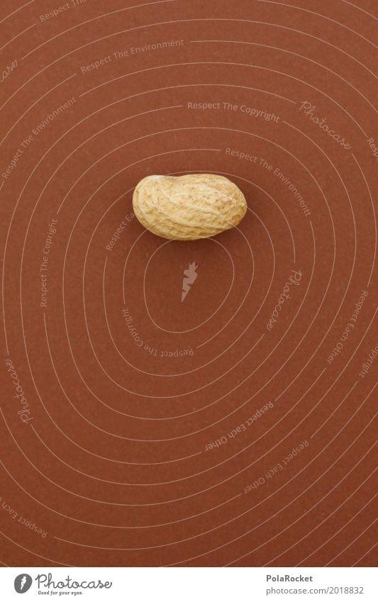 Healthy Eating Art 1 Brown Esthetic Closed Work of art Hard Nut Headstrong Peanut Nutshell Nut brown