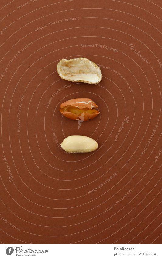 Art Brown Esthetic 3 Within Work of art Nut Peanut Nutshell Nut brown Peanut harvest