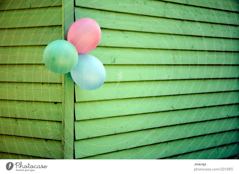 Blue Green Joy Colour Wall (building) Emotions Wood Happy Party Wall (barrier) Line Feasts & Celebrations Pink Happiness Balloon Creativity