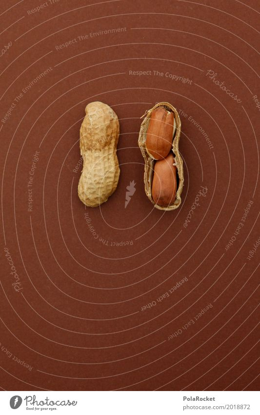 Art Brown 2 Esthetic Delicious Division Nut Snack Peanut Nutshell Nut brown Peanut harvest Fruit seed head