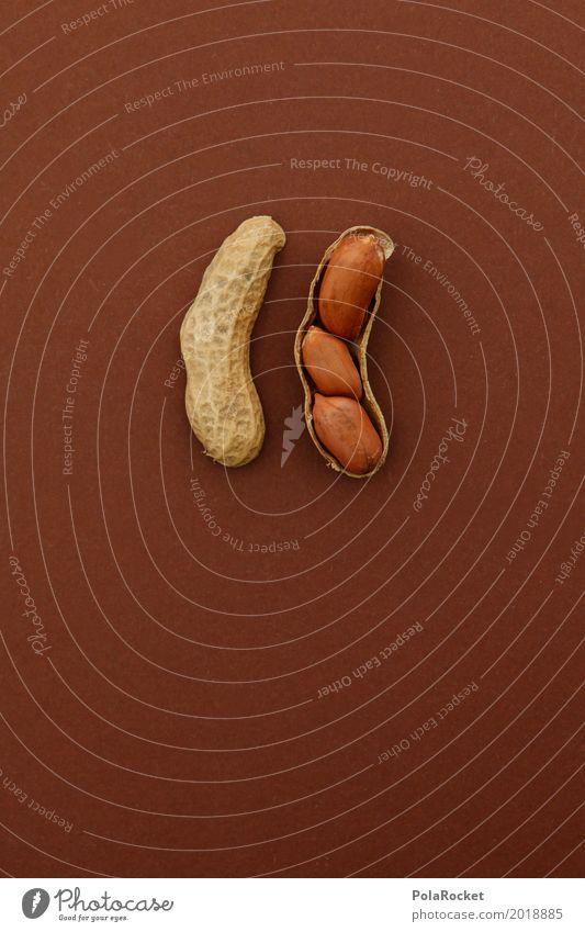 Healthy Eating Art 1 Esthetic Multiple Creativity 3 Delicious Nut Snack Peanut Nutshell Nutcrackers Bonus Nut brown