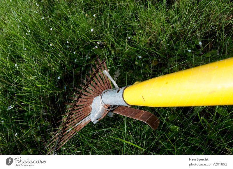 Green Yellow Grass Garden Metal Lawn Plastic Rust Gardening Rake Gardening equipment