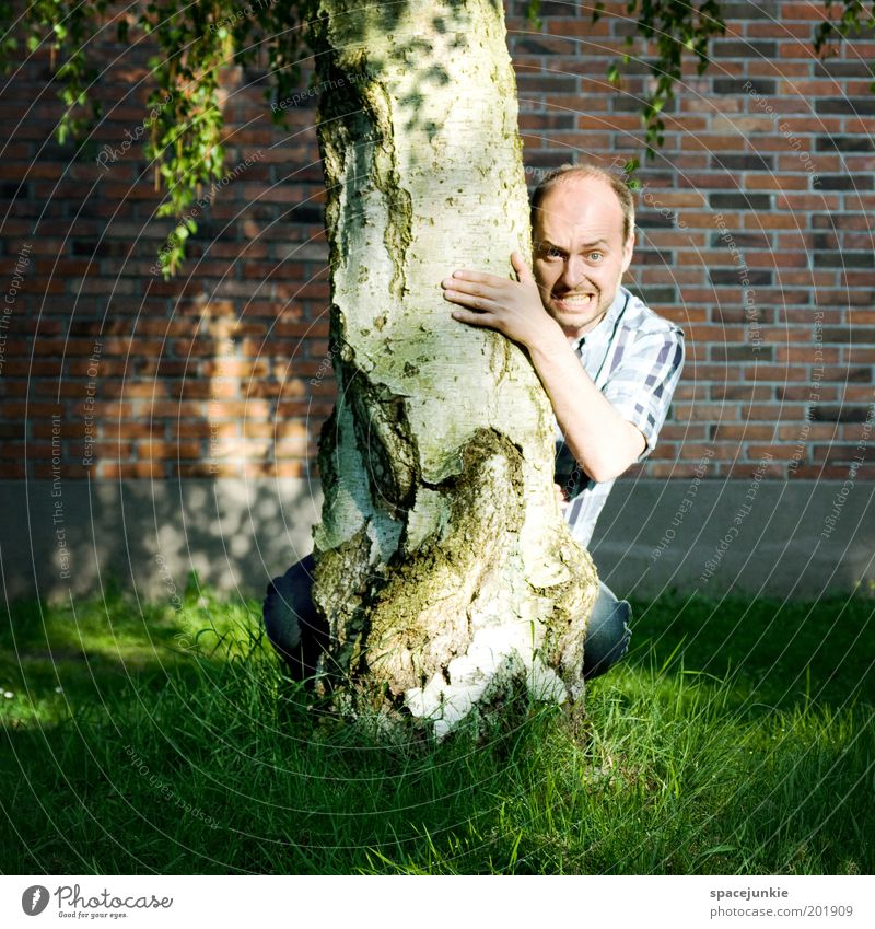 Behind The Tree Masculine Head Face 1 Human being 30 - 45 years Adults Aggravation Hiding place Hide Funny Whimsical Freak Colour photo Exterior shot