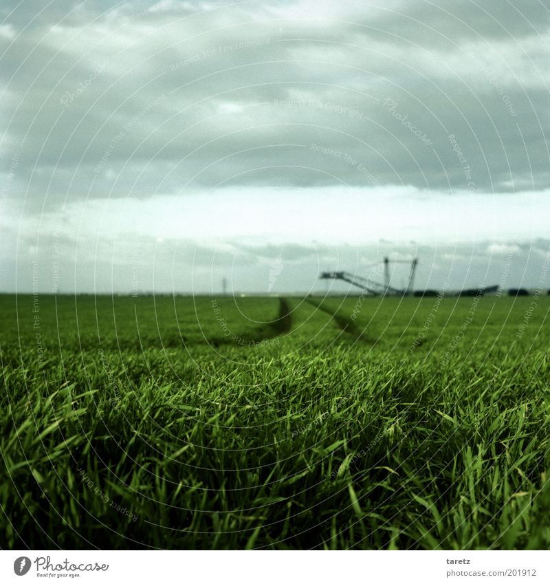 Sky Green Landscape Field Wind Environment Horizon Change Transience Agriculture Agriculture Converse North Rhine-Westphalia Industry Coal Cornfield