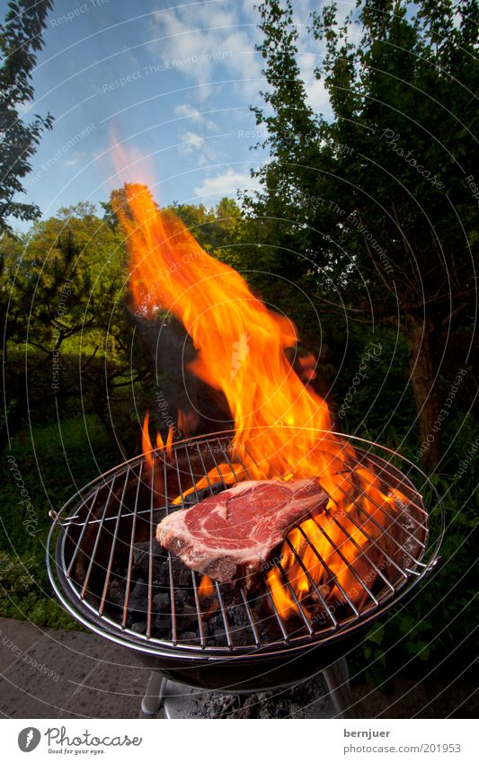 angrillas Barbecue (apparatus) Meat Flame Fire Burn Steak Sky Raw Clouds Tree Garden Summer Barbecue (event) Coal Warmth Smoke Orange Beef Day Household Grass