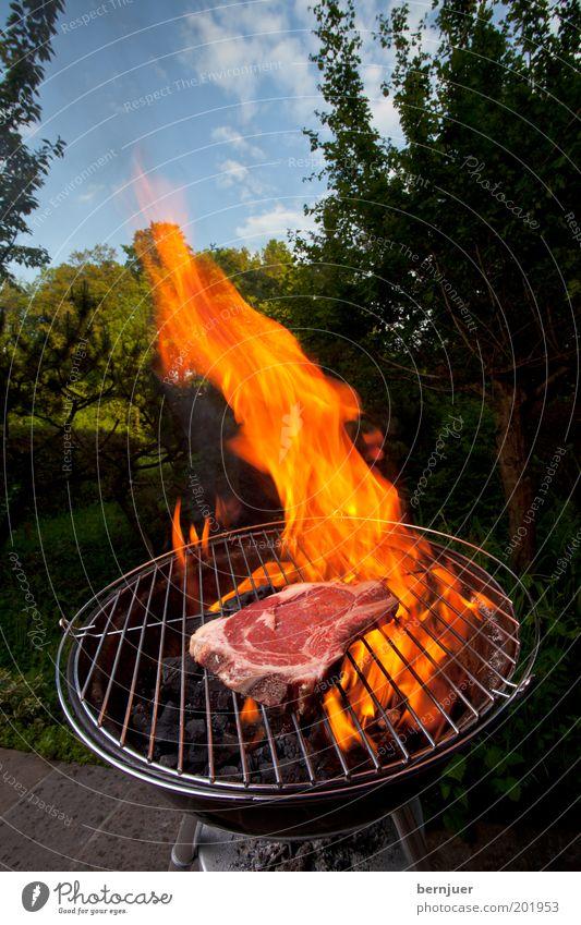 Sky Tree Summer Clouds Nutrition Grass Garden Warmth Orange Fire Smoke Rust Barbecue (event) Burn Meat