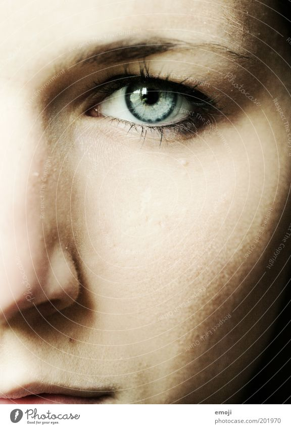 strong Feminine Eyes 1 Human being 18 - 30 years Youth (Young adults) Adults Strong Blue Intensive Looking Future Right ahead Direct Face Brave Expression