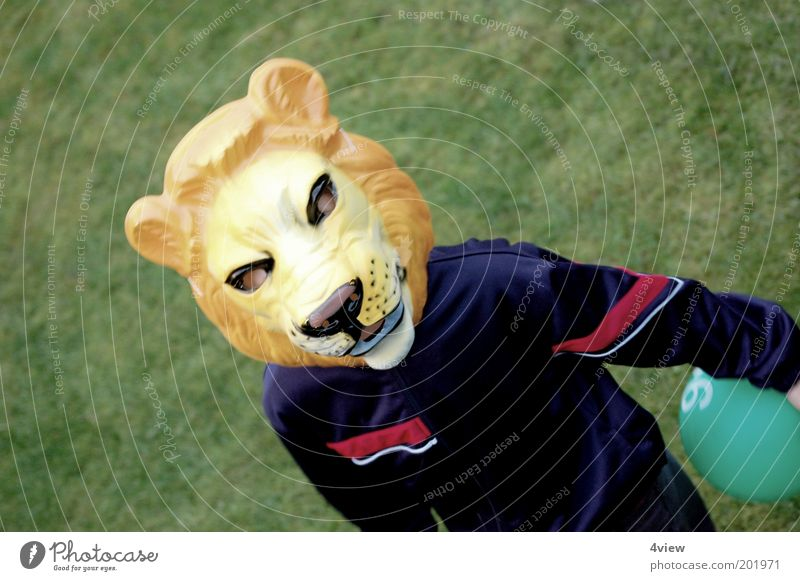 the Jogi is loose Joy Playing Fan Human being Infancy 1 Going Free Blue Yellow Green Moody Bravery Identity Colour photo Exterior shot Lion Mask Dress up Hide