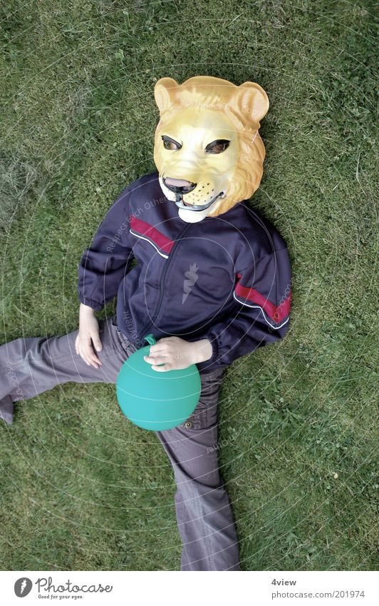 Lion lies long Joy Playing Garden Wild animal Lie Happiness Uniqueness Infancy Colour photo Exterior shot Bird's-eye view Dress up Mask Costume Balloon Lawn