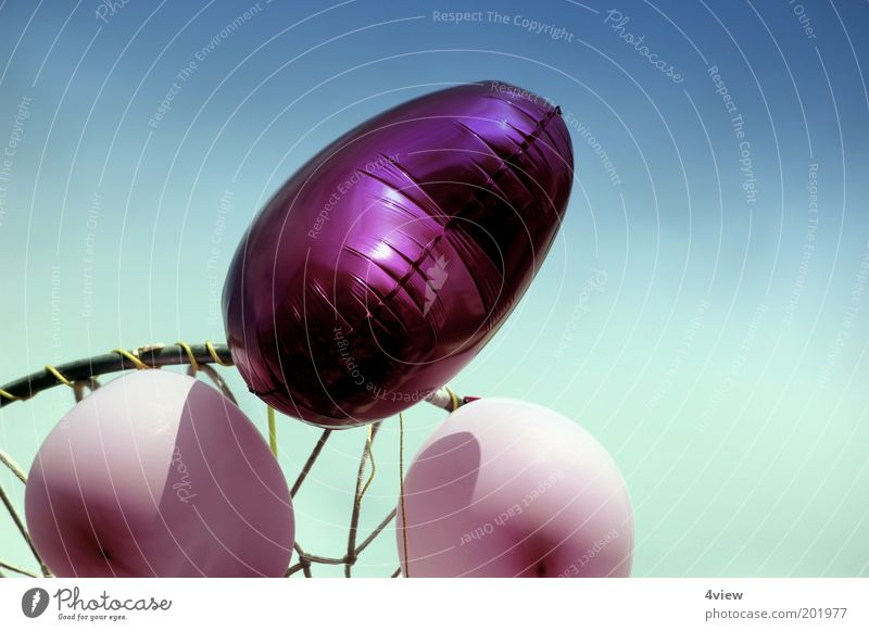 Sky Blue Love Colour Party Happy Heart Glittering Pink Flying Tall Balloon Net Longing Ease Surprise