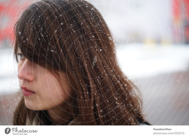Human being Youth (Young adults) Winter Cold Snow Feminine Emotions Head Snowfall Contentment Observe Fatigue Freeze Young woman Woman