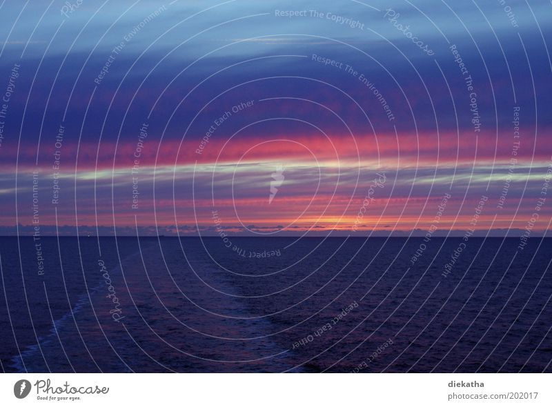 Water Sky Ocean Blue Dream Waves Pink Horizon Romance To enjoy North Sea Vacation & Travel Cruise